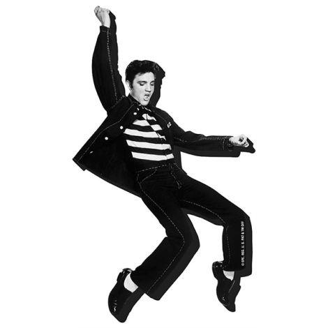 Aquarius Elvis Jailhouse - Chunky Magnet