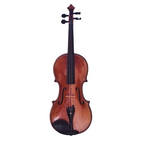 Vienna World VWP0540 Magnet Violin