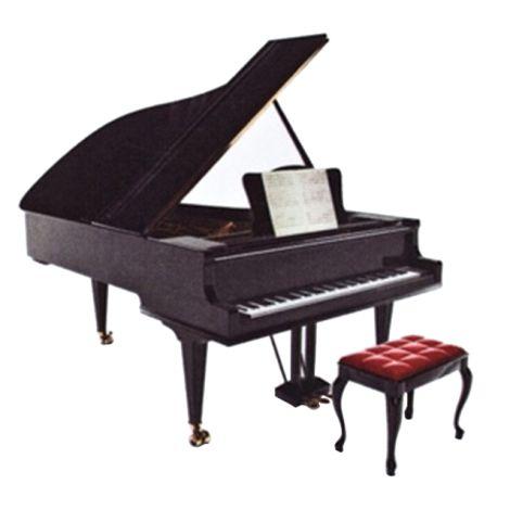 Vienna World VWP0568 Magnet Piano